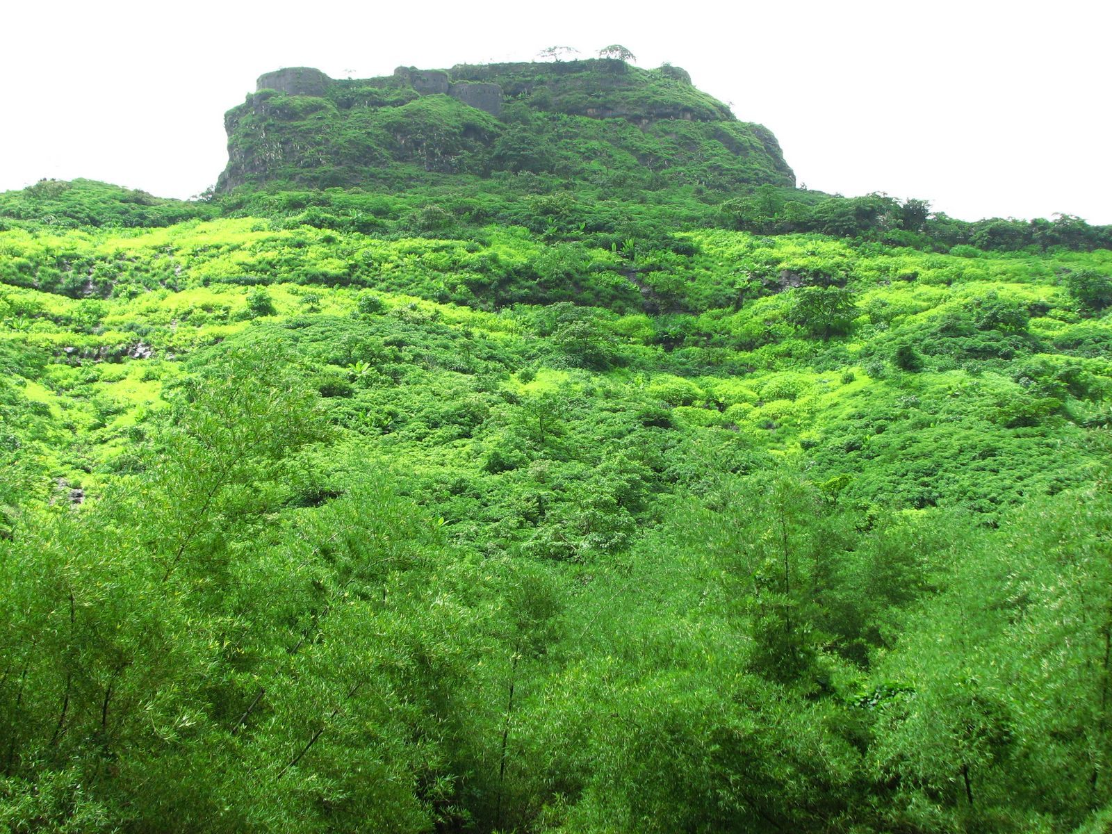 Sahyadri Mountains Sahyadri Mountains Pic 6